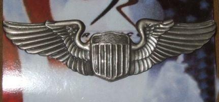 Amerikai légierő jelvény 1650