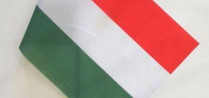 Zászló 45 X 30cm